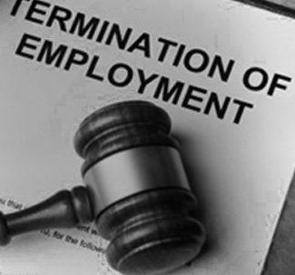 Employment & Labor